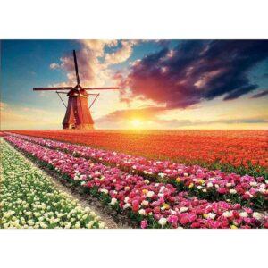 Пейзаж с лалета - картина