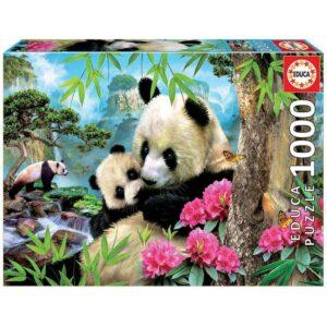 Семейство панди - кутия