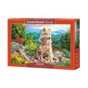 Castorland - Ново поколение - 1000 части - кутия