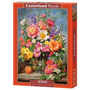 Castorland - Юнски цветя - 1000 части - кутия