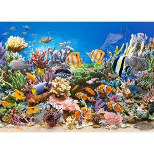 Castorland - Цветовете на океана - 260 части - картина