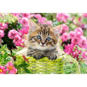 Castorland - Коте сред градински цветя - 500 части - картина
