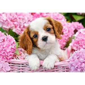 Castorland - Кученце в розови цветя - 500 части - картина