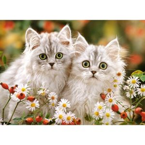 Castorland - Пресийски котета - 200 части - картина