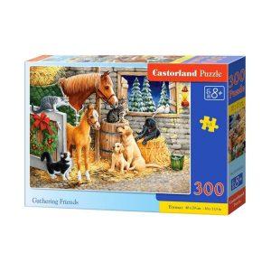 Castorland - Приятелско събиране - 300 части - кутия