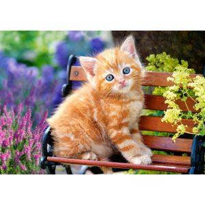 Castorland - Рижаво коте - 500 части - картина