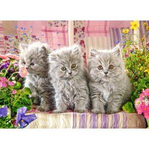 Castorland - Три сиви котенца - 300 части - картина